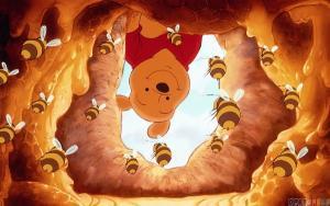 Rủ nhau đi kiếm mật ong