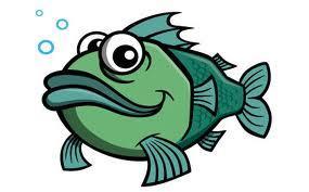 Mở hộp cá