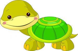 Con rùa khôn ngoan