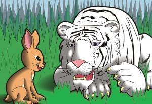 Con thỏ và con hổ