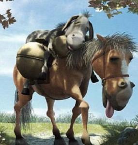 Lừa và ngựa