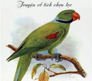 Sự tích chim năm trâu sáu cột và chim bắt cô trói cột