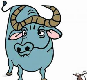 Ngưu là con bò tót